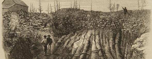 Wood engraving of two men standing in an excavated field.