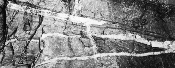 Black and white image of quartz veins running underground at the Caribou Gold District.