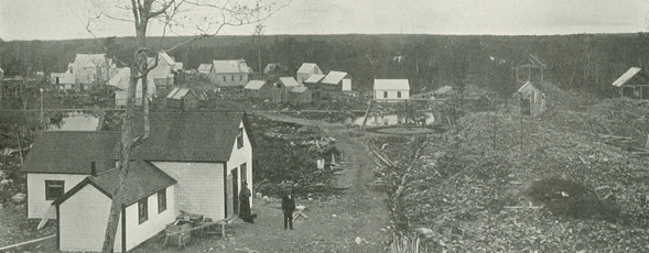 Photograph of the community of Forest Hill.
