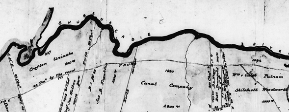 Detail of a survey plan of the gold district of Oldham, showing the lots laid out.
