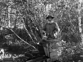 Black and white photograph of prospector Deacon Gay 'washing' gold.