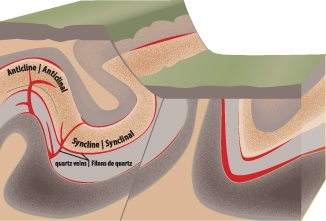 Diagram showing red lines where quartz veins form between and within folded layers of rock.