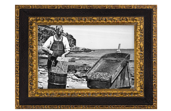 Prospector washing gold using a gold cradle at The Ovens, Lunenburg County in the 1950s.